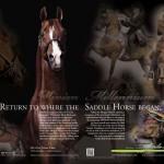 Triumph/Sarde Print Ad